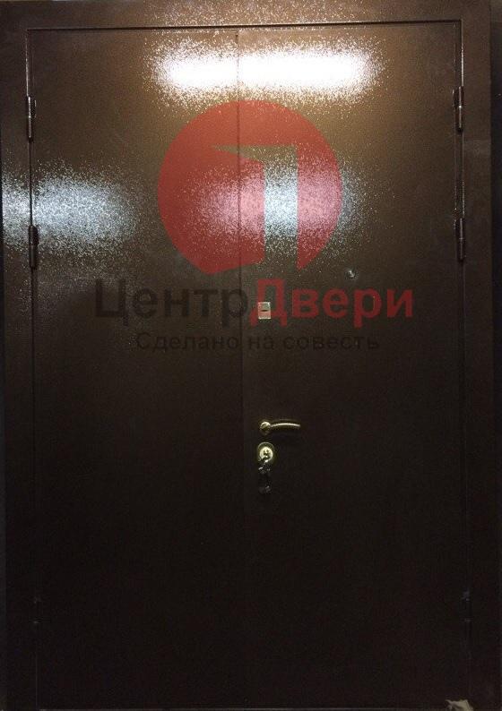 Тамбурная дверь с порошковым напылением